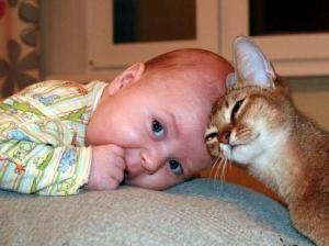 Малыш и потомец