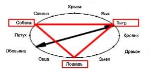 Совместимость по восточному гороскопу - третий треугольник