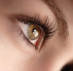 Ячмень на глазу - способы самого эффективного лечения в домашних условиях
