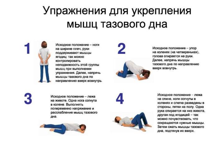 Упражнения Кегеля для урепления мышц тазового дна
