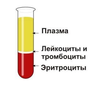 Норма СОЭ в крови у женщин по возрасту в таблице: как определяют  показатель