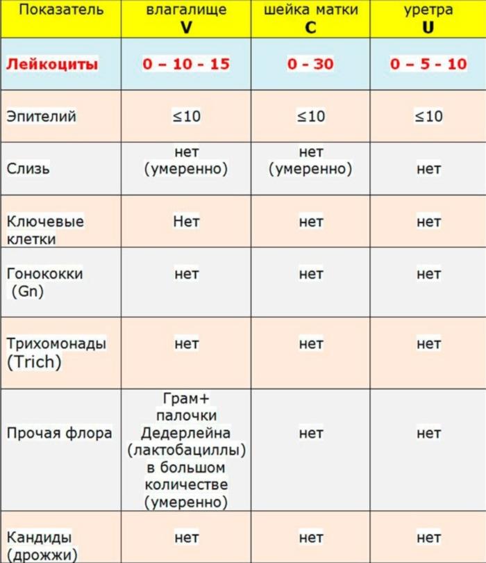 Таблица нормы лейкоцитов в мазке у женщин и другие показатели анализа