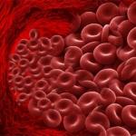 Ответ на вопрос, чем опасен высокий гемоглобин у женщин
