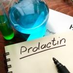 Какая должна быть норма пролактина у женщин: общая информация