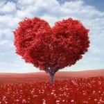 Ответ на вопрос, как ведут себя влюбленные Козероги мужчины