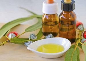 Полезные свойства масок для волос из эвкалиптового масла