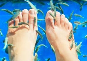 Пилинг рыбками: противопоказания и меры предосторожности