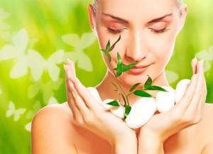 Пилинг Шисейдо (Shiseido Green Tea) для лица: инструкция по применению