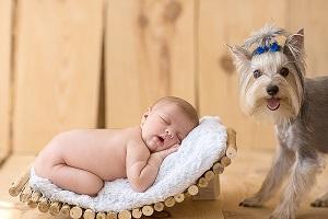 Малыш и домашний питомец в доме