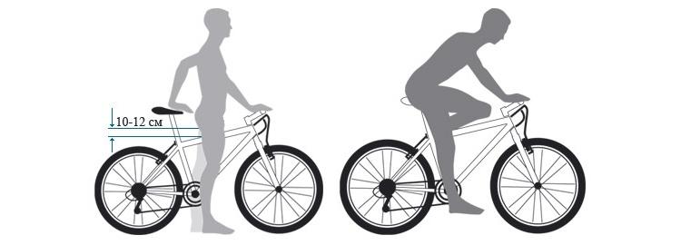 Полезные советы, как выбрать велосипед для мужчины