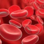 Распространенные причины снижения гемоглобина в крови у женщин