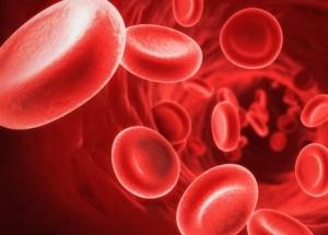 За что отвечает гемоглобин в крови у женщин?