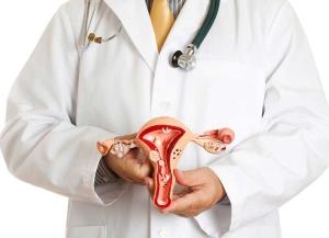 Эндометрит и эндометриоз: в чем разница, симптомы заболеваний