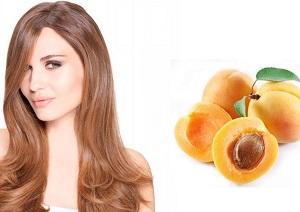 Польза и применение масла из абрикосовых косточек