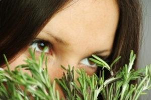 Возможный вред и предосторожности в применении масла розмарина для волос