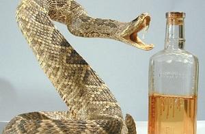 Змеиное масло для волос - польза и ценные качества продукта
