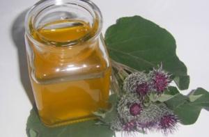 Польза и вред репейного масла для волос - все особенности лечения локонов данным средством