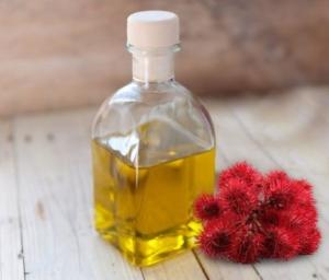 Как использовать касторовое масло для волос, каковы полезные свойства продукта?
