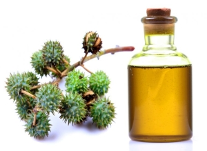Как использовать касторовое масло для волос: инструкция по применению